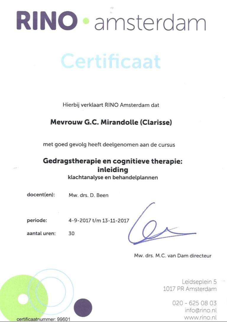 4.7 Gedragstherapie en cognitieve therapie